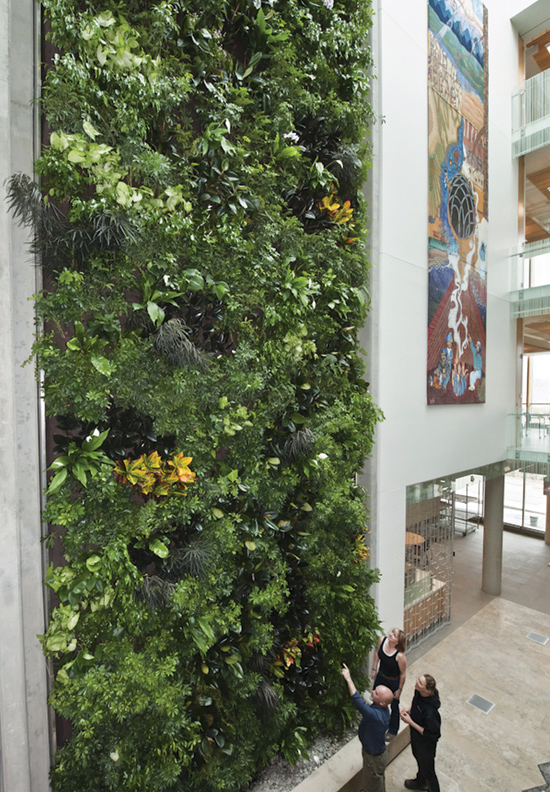 Hydroponic Living Plant Walls Are Based On Vertical Applications Of  Traditional Hydroponic Systems But With Particular Attention To The Growing  Media And ...