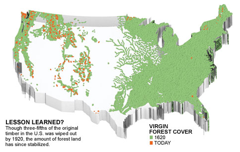 CE CENTER Lumber By The Numbers - Us forest cover map