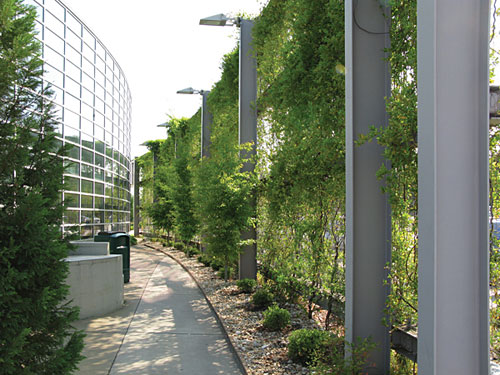 CE Center - Greening the Site: Design Options for Sustainability