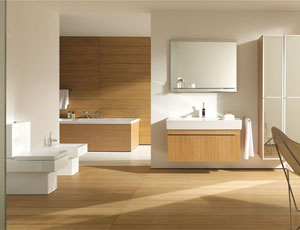 Bathroom Fixtures as Furniture