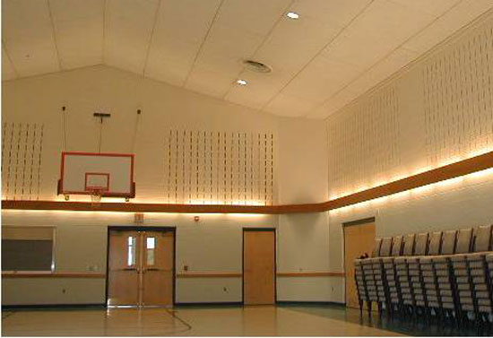 Photo of a gymnasium with sound absorbing panels.