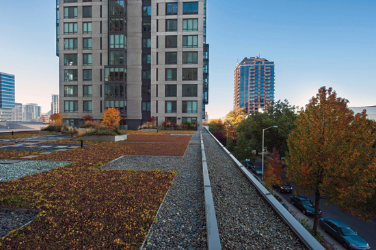 The green roof at Horizon House Retirement Community