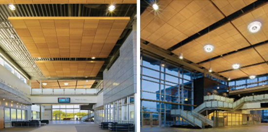 Case Study. Photos Courtesy Of Armstrong Ceiling And Wall Systems