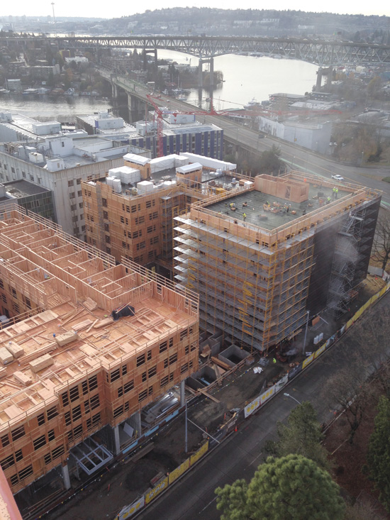 Maple and Terry Halls