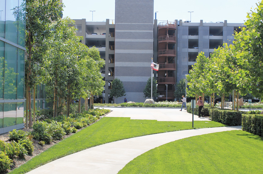 Photo of the landscaping at Kaiser Permanente Hospital.