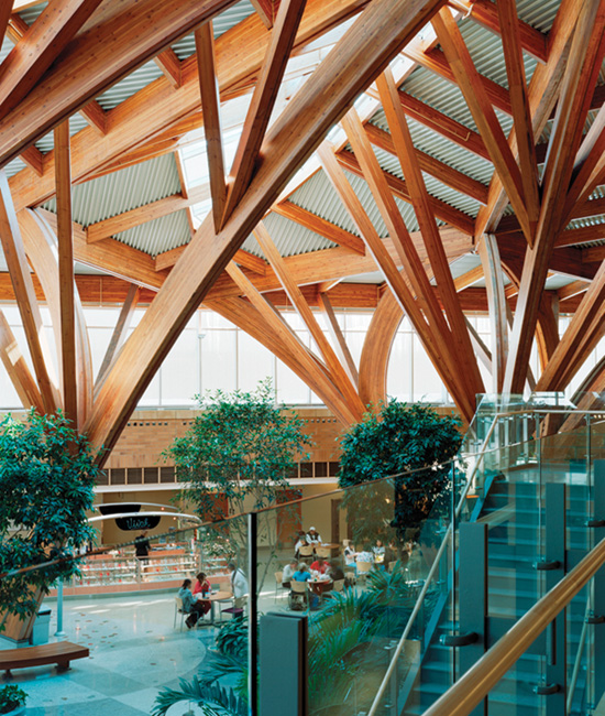 Credit Valley Hospital in Mississauga, Ontario, is one of an increasing number of healthcare facilities making use of exposed wood to create a warm, natural aesthetic that supports their healing objectives.