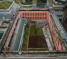 Green Roof Failures – What is to Blame?