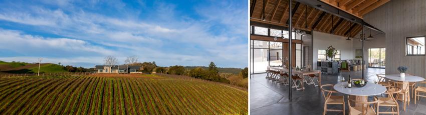 MacRostie Winery and Vineyards