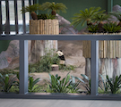 Specifying Glass for Zoos, Parks, and Aquariums
