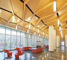New Acoustical Options in Specialty and Seamless Ceiling Systems