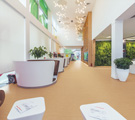 Flooring: Affecting the Environment from the Ground Up