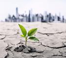 Coastal Resilience: Adaption for an Uncertain Future
