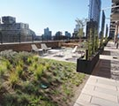 Landscape Architecture: Great Outdoor Spaces by Design