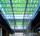 Designing with Glass: Privacy and Translucency