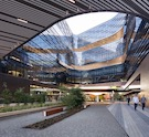 How Ceilings Can Contribute to Biophilic Design