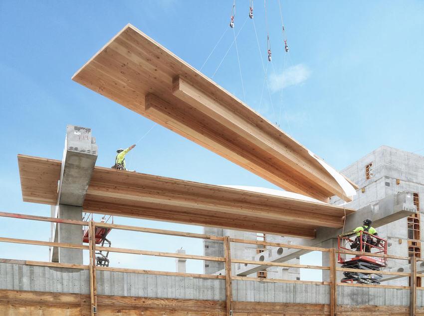 Future of Wood