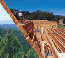 Engineered Wood Products (EWP) Basics:  Strong, Safe, and Green
